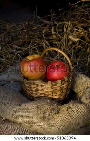 Collection of fruits in basket #51063394