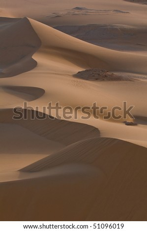 Dune in the early morning. #51096019