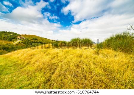 Emilia Romagna, Italy, fields on hills of Bologna #510964744