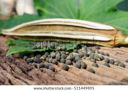 Okra, fresh fruit, dried fruit and seeds. #511449895