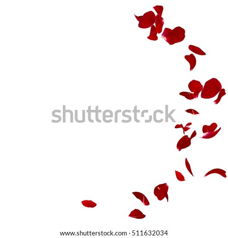 Red rose petals scattered on the floor in a semi-circle. There is a place for Your text or photo #511632034