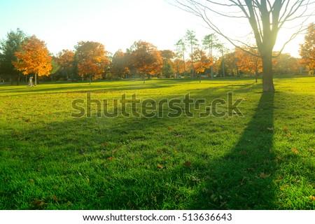 Park #513636643