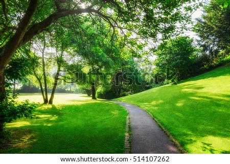 Spring green park. City park with pathway, fresh lawn and trees in the  morning. Springtime landscape background. Beauty in nature #514107262