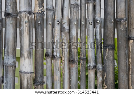 bamboo fence background #514525441