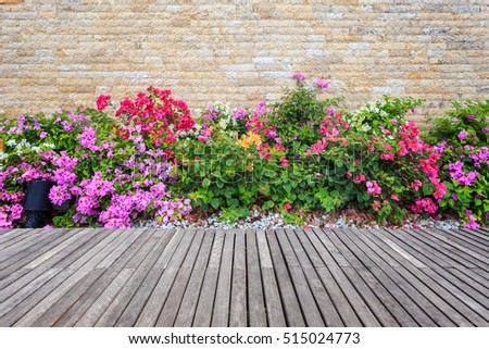 Old wooden decking and plant with wall garden decorative #515024773