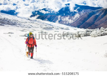 girl with dog walking on the trail in the mountains, winter in the mountains. #515208175