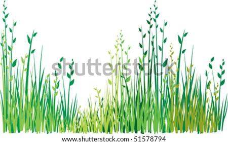 Grass background #51578794