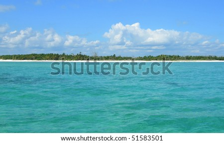 Caribbean beach and waters at the Atlantic in Cancun, Mexico #51583501