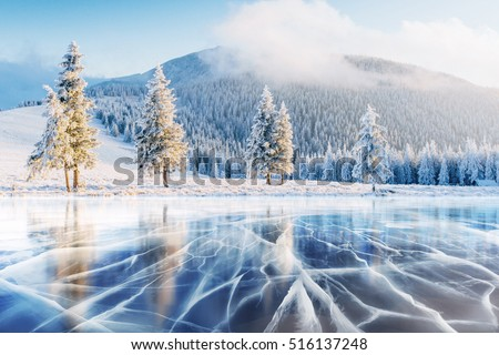 Cracks on the surface of the blue ice. Frozen lake in winter mountains. It is snowing. The hills of pines. Carpathian Ukraine Europe. Royalty-Free Stock Photo #516137248