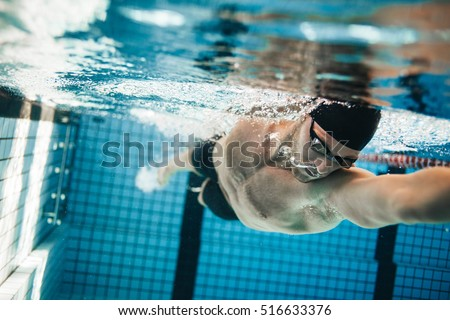 Fit swimmer training in the swimming pool. Professional male swimmer inside swimming pool.