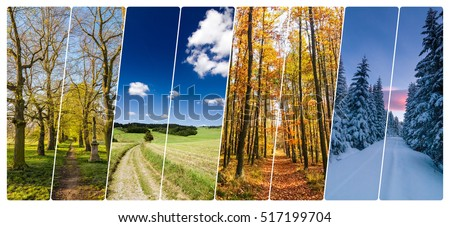 Four season collage from vertical banners with roads in landscape. All used photos belong to me. Royalty-Free Stock Photo #517199704