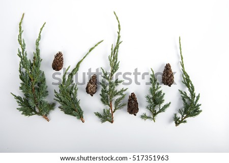 Pinecones and juniper twigs against white background.  Top angle view. #517351963