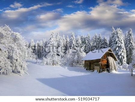 Sunny winter morning in Carpathian village with snow covered trees in garden. Colorful outdoor scene, Happy New Year celebration concept. Artistic style post processed photo.