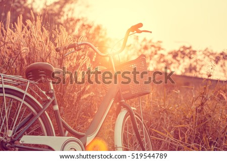 Vintage Bicycle in Summer Meadow made with color Vintage Tone,Filtered effect