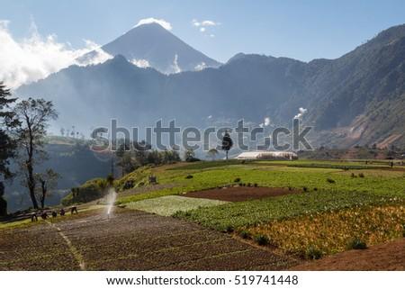 Fields in central Guatemala #519741448