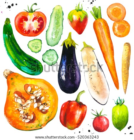 Watercolor illustration with farm grown products. Vegetables set: tomato, eggplant, carrots, pumpkin, cucumber, zucchini, peppers. Fresh organic food. healthy food. Drawings for magazine and cookbook