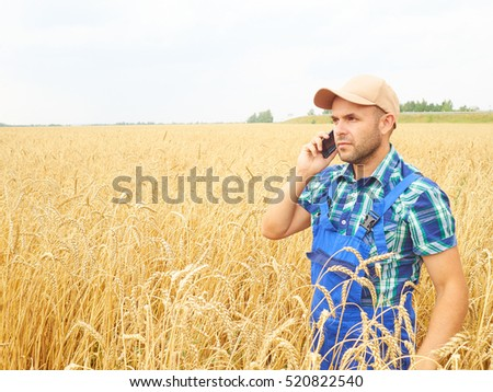 Farmer in a plaid shirt controlled his field. Talking on the phone. Wheat harvest. Agriculture. #520822540