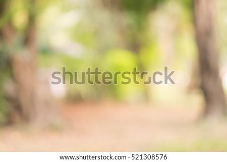 nature green  Walkway #521308576
