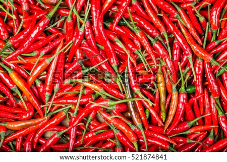 red chilli background #521874841