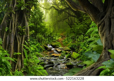 Tropical jungle with river #522163228