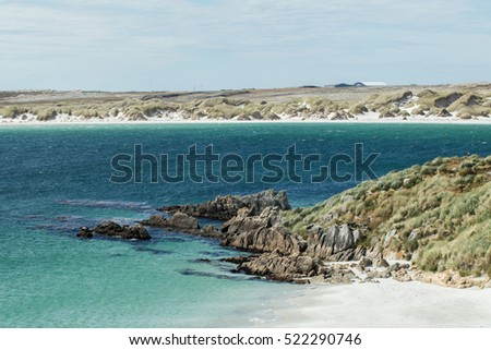 sandy beach of Gypsy Cove in the Falkland Islands, South America, UK #522290746