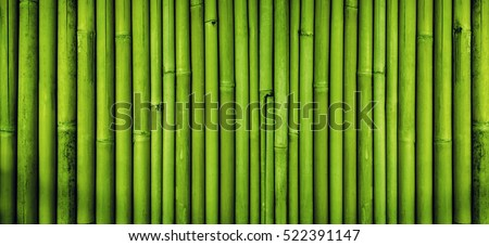 Green bamboo fence texture background, bamboo texture panorama Royalty-Free Stock Photo #522391147