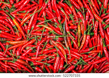 red chilli background #522707335