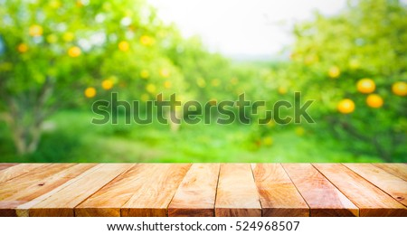 Wood table top with blur of orange garden in the morning.For montage product display or design key visual layout #524968507