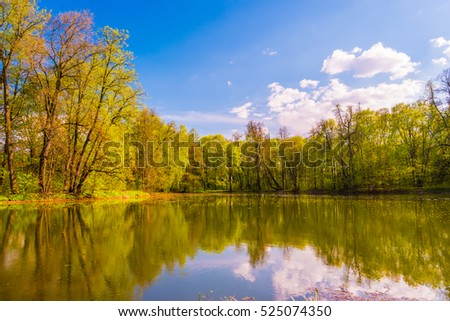 Autumn Landscape. Park in Autumn. The bright colors of autumn in the park by the lake. #525074350