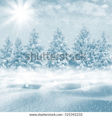 Winter beautiful landscape with snow-covered trees and the sky with clouds #525342232