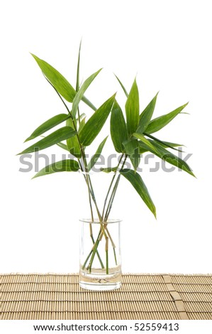 Bamboo leaf in vase on bamboo mat #52559413