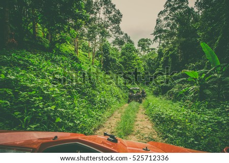 Extreme ride on ATV, buggies, jeeps. Journey through the jungle. Extreme quad biking, dune buggy, Jeep in the jungle, forest / ATV, UTV . in motion.  toned image #525712336