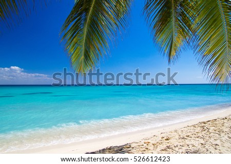 beautiful beach and tropical sea #526612423