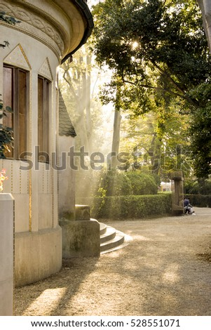 magic sunshine in Venice #528551071