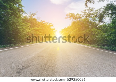 Country road / Asphalt road through the tree clouds on blue sky in summer day at sunrise scence with vintage tone  / Forest road / Driving on an empty road  #529250056