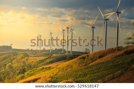 Wind turbines on sunny morning #529618147