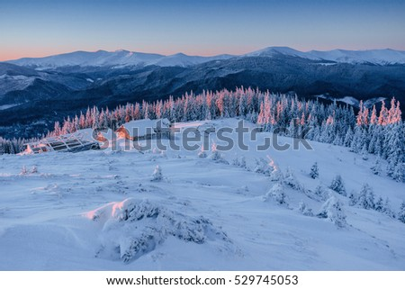 Cabin in the mountains in winter. Mysterious fog. In anticipation of holidays. Happy New Year. Carpathians. Ukraine, Europe.
