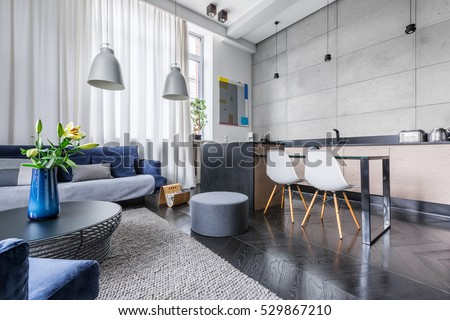 Modern apartment with kitchen and living room combined Royalty-Free Stock Photo #529867210