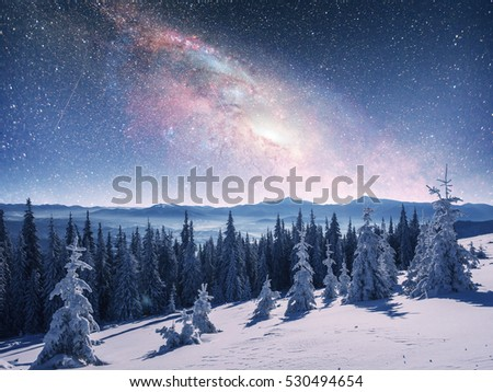 Magical winter landscape with snow covered tree. Vibrant night sky with stars and nebula and galaxy. Deep sky astrophoto. Courtesy of NASA.  #530494654
