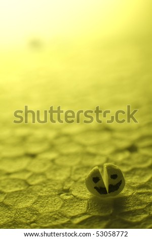 conceptual photo of small polystyrene head split in two half (representing double personality) and smiling, another head defocused in background