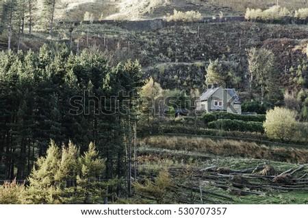 Deforestation in Peak District, England, UK #530707357