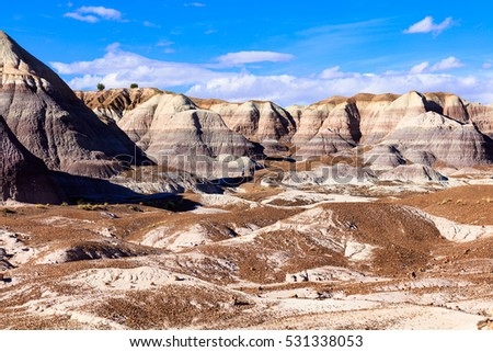 Desert landscape of the beautiful petrified forest in Arizona. #531338053