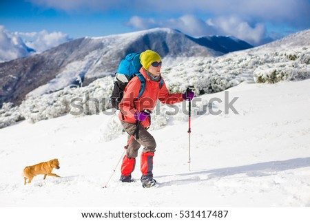 girl with dog walking on the trail in the mountains, winter in the mountains. #531417487