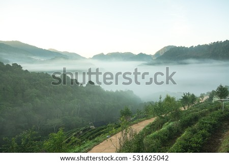 Beautiful cooling moment with foggy and cloudy view of mountains. #531625042