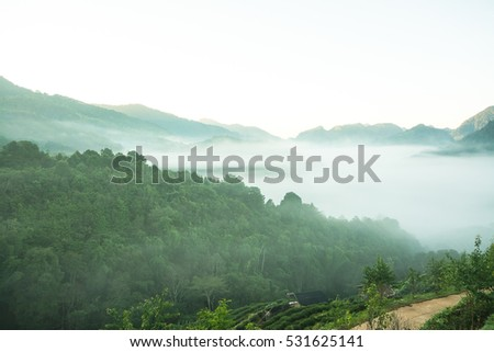Beautiful cooling moment with foggy and cloudy view of mountains. #531625141
