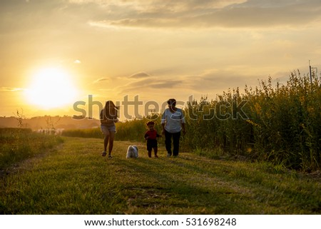 Grandmother, mother and daughter and a dog with happy family enjoying life together at meadow; light and lens flare effect tone. #531698248