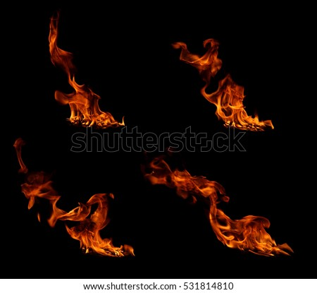 Fire flames on a black background #531814810