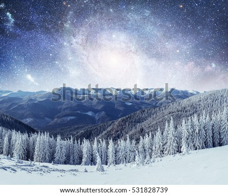 Magical winter landscape with snow covered tree. Vibrant night sky with stars and nebula and galaxy. Deep sky astrophoto. Courtesy of NASA.  #531828739