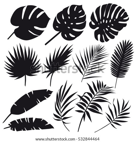 Set of palm leaves silhouettes isolated on white background. Vector EPS10