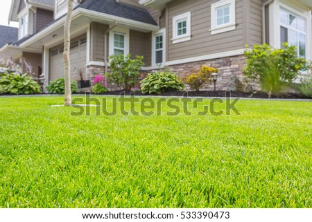 Nicely trimmed front yard with green grass in front of a luxury house.  Royalty-Free Stock Photo #533390473